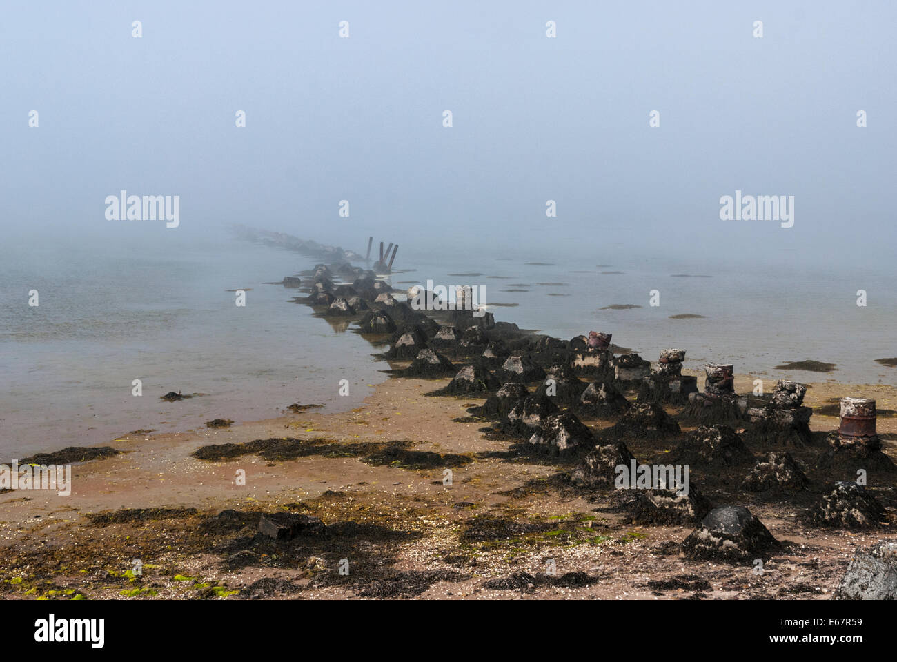The remains of World War 2 Sea Defenses at St Peters Pool, Deerness, East mainland, Orkney Scotland Stock Photo