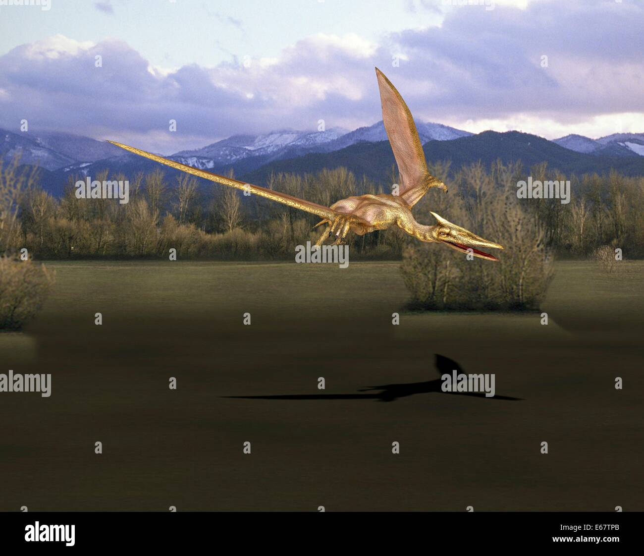 Dinosaurier Quetzalcoatlus / dinosaur Quetzalcoatlus - Stock Image