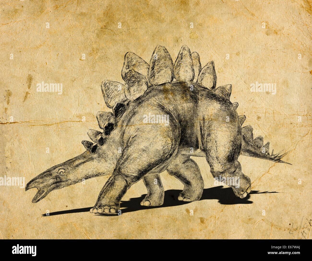 Dinosaurier Stegosaurus / dinosaur  StegosaurusStock Photo