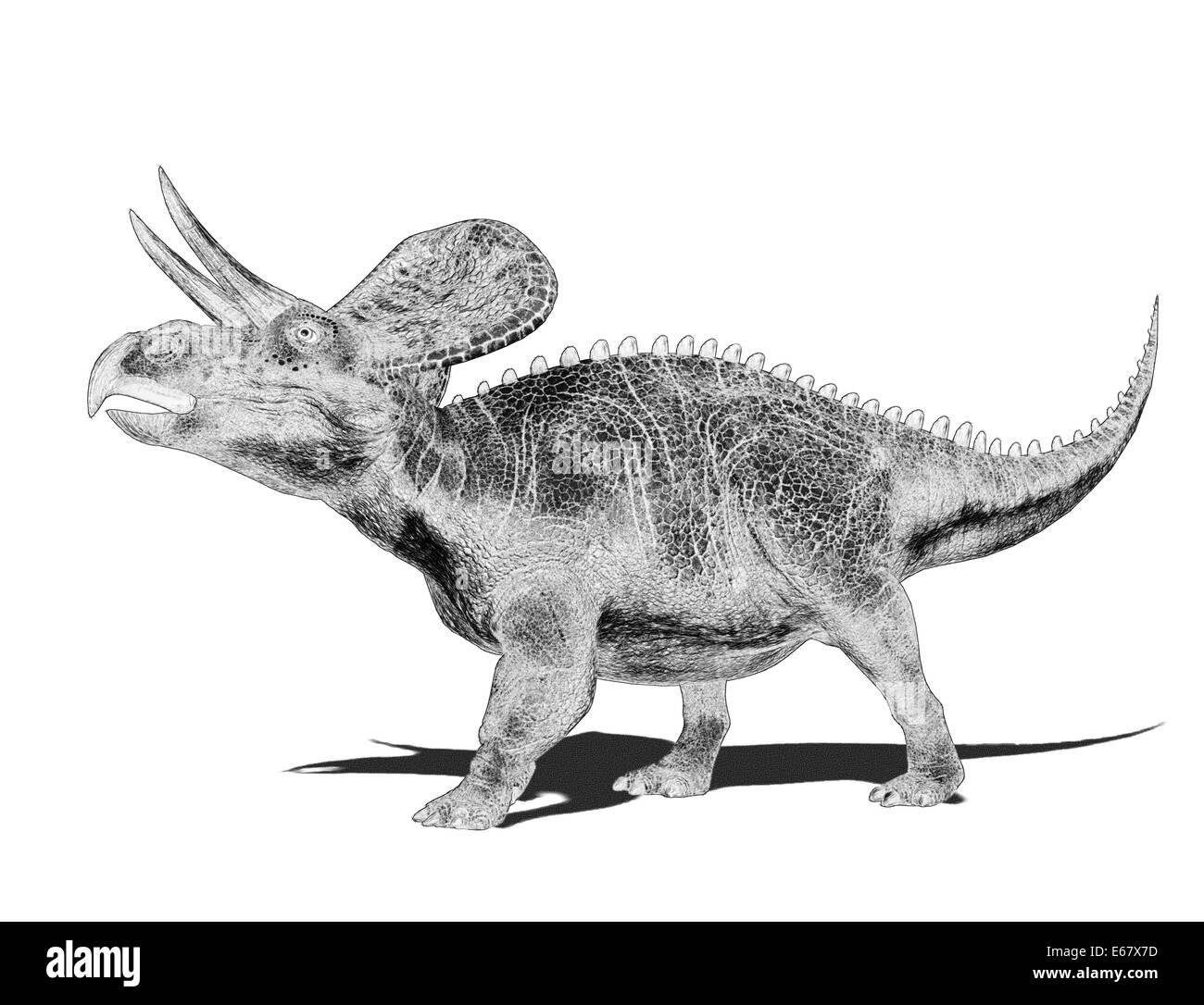 sketch dinosaur Zuniceratops - Stock Image