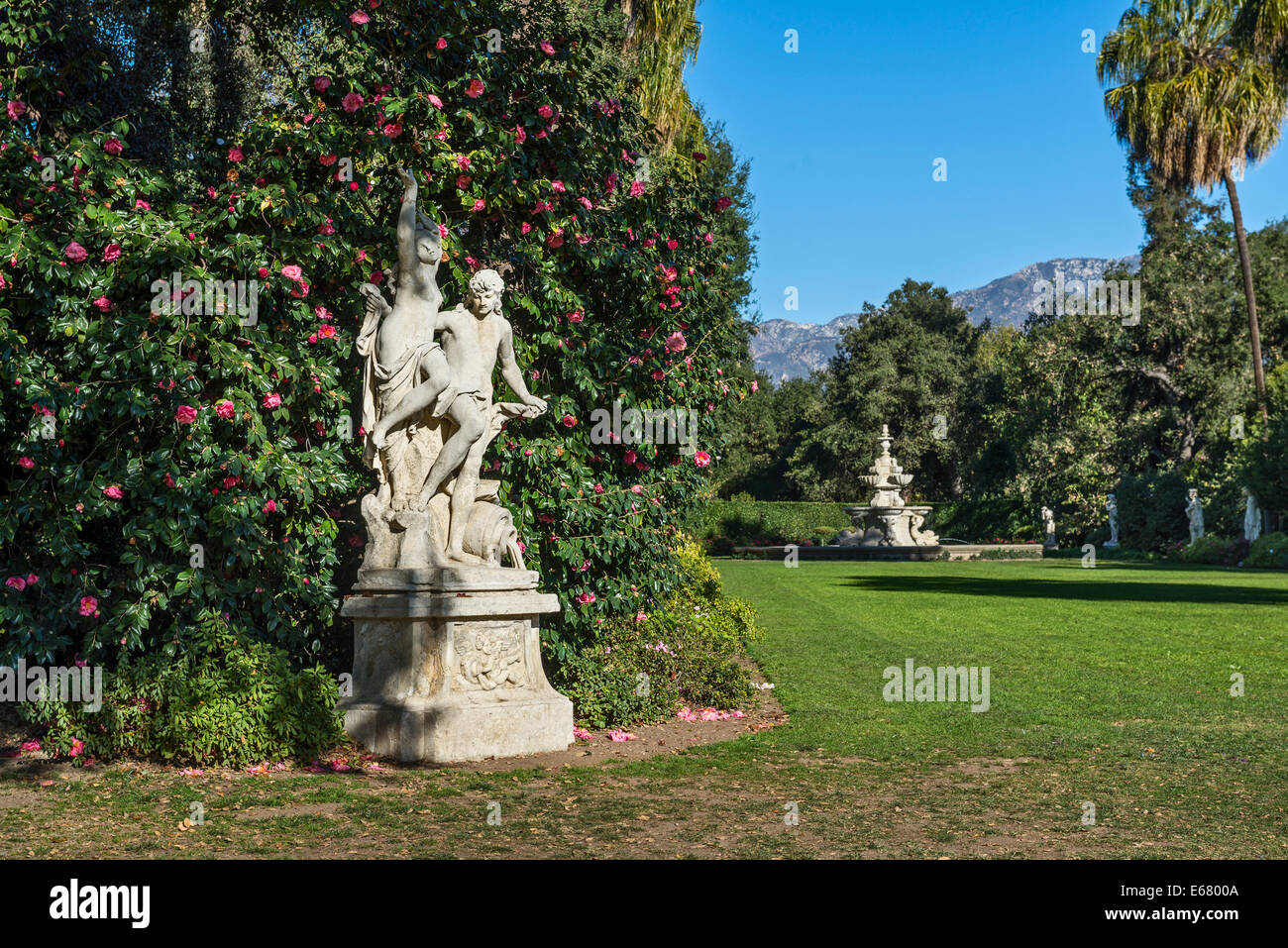 Spring flower blooms at the North Vista Lawn of the Huntington Library and Botanical Gardens. - Stock Image