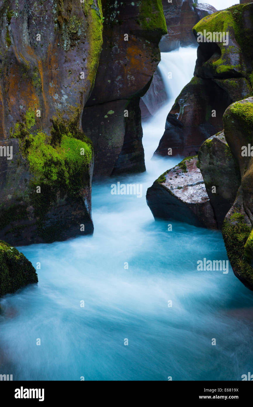 Avalanche Creek gorge in Glacier National Park, located in Montana near the US-Canada border - Stock Image