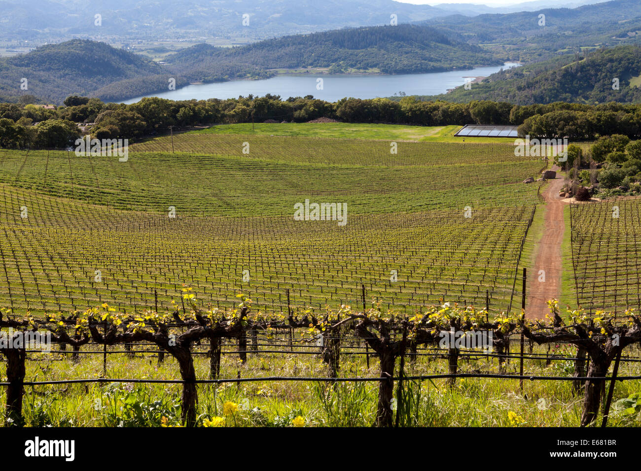 Hennessey Lake viewed from Continuum Estate, Napa Valley, Napa, California, USA - Stock Image