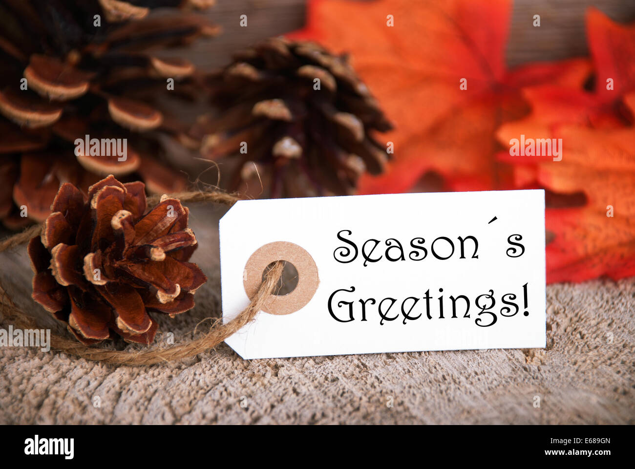 An Autumnal Label With The Words Seasons Greetings Fall Background