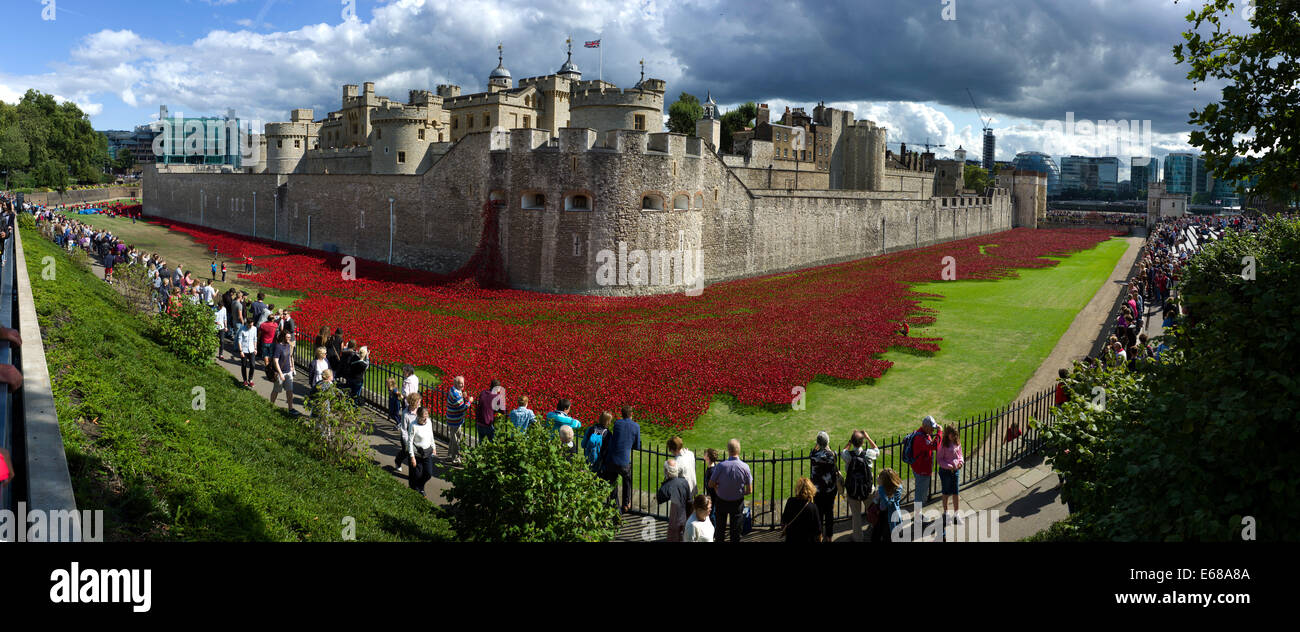 Poppies at The Tower of London, London,England,UK. 18 August 2014 The wonderful evolving instalation, 'Blood - Stock Image