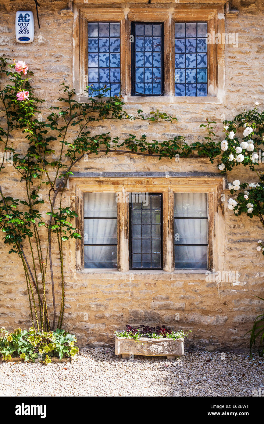 Cotswold stone house front with mullioned, leaded windows and rambling roses. - Stock Image