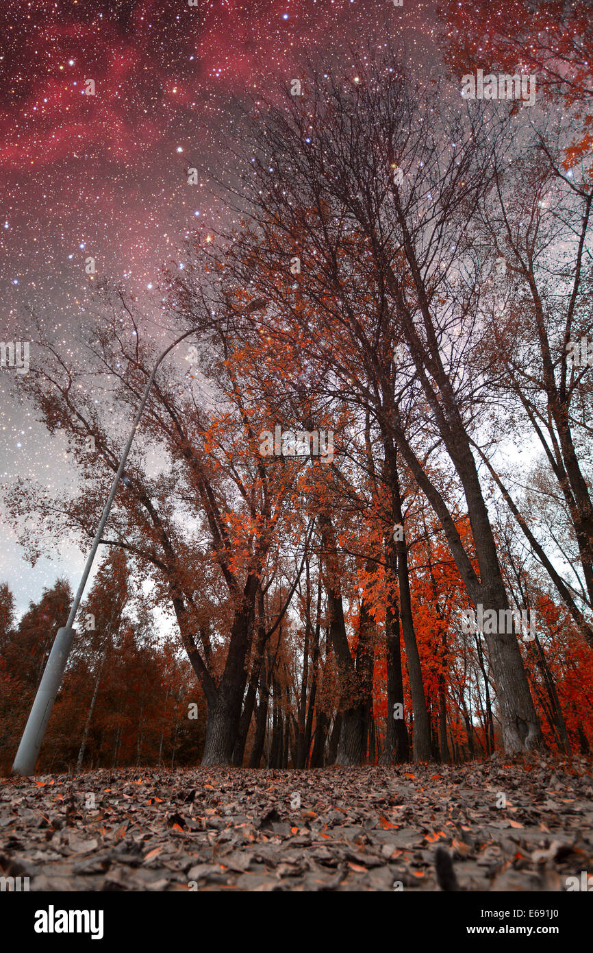 spring night infrared photography. Elements of this image furnished by NASA Stock Photo