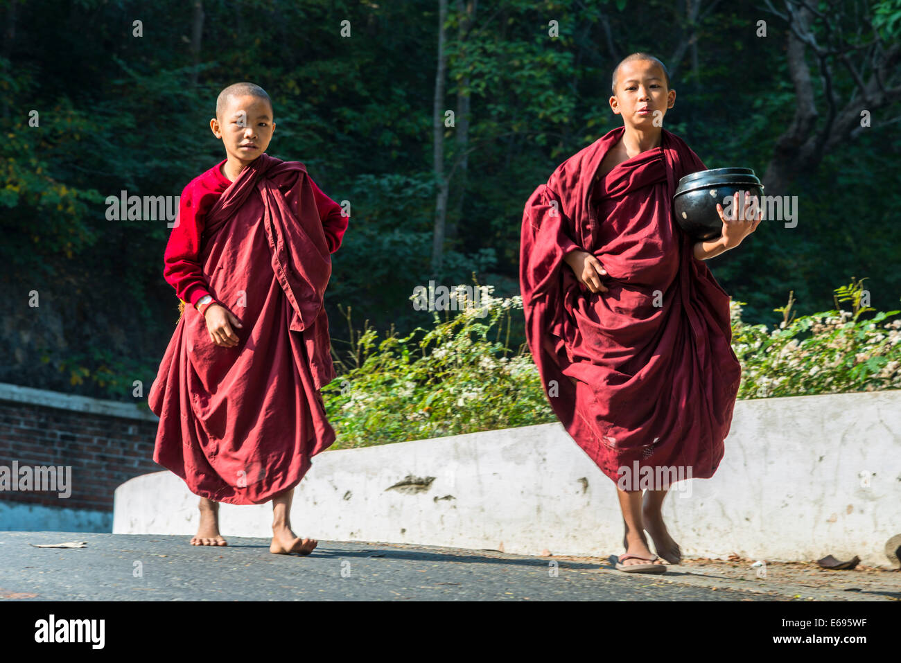 Young Buddhist novices with begging bowls collecting alms in the morning, Sagaing, Sagaing Region, Myanmar - Stock Image