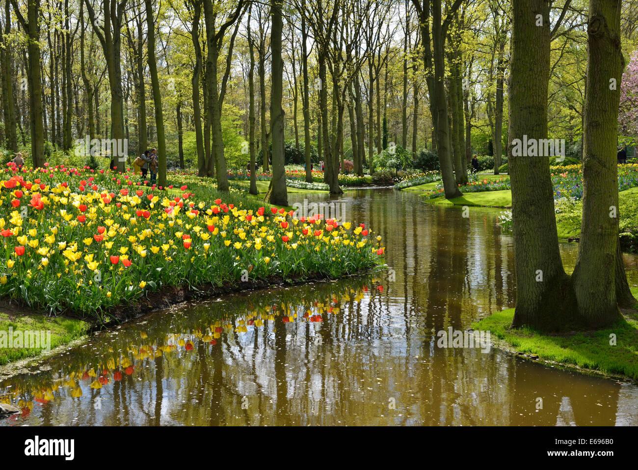 Keukenhof, Lisse, South Holland, Netherlands - Stock Image