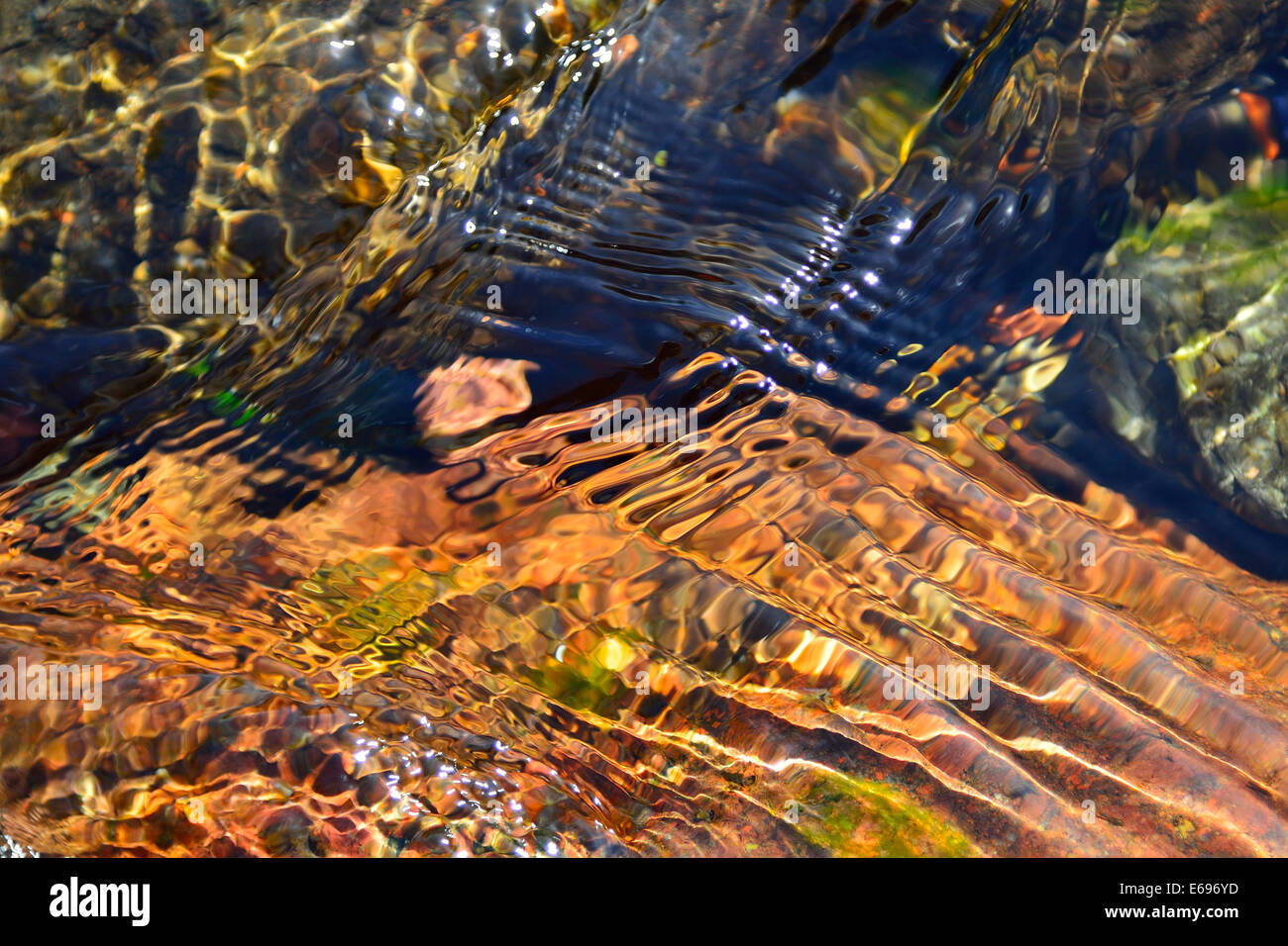 Reflections of colorful stones in the clear water of the Fango River, Fango Valley, Corsica, France - Stock Image