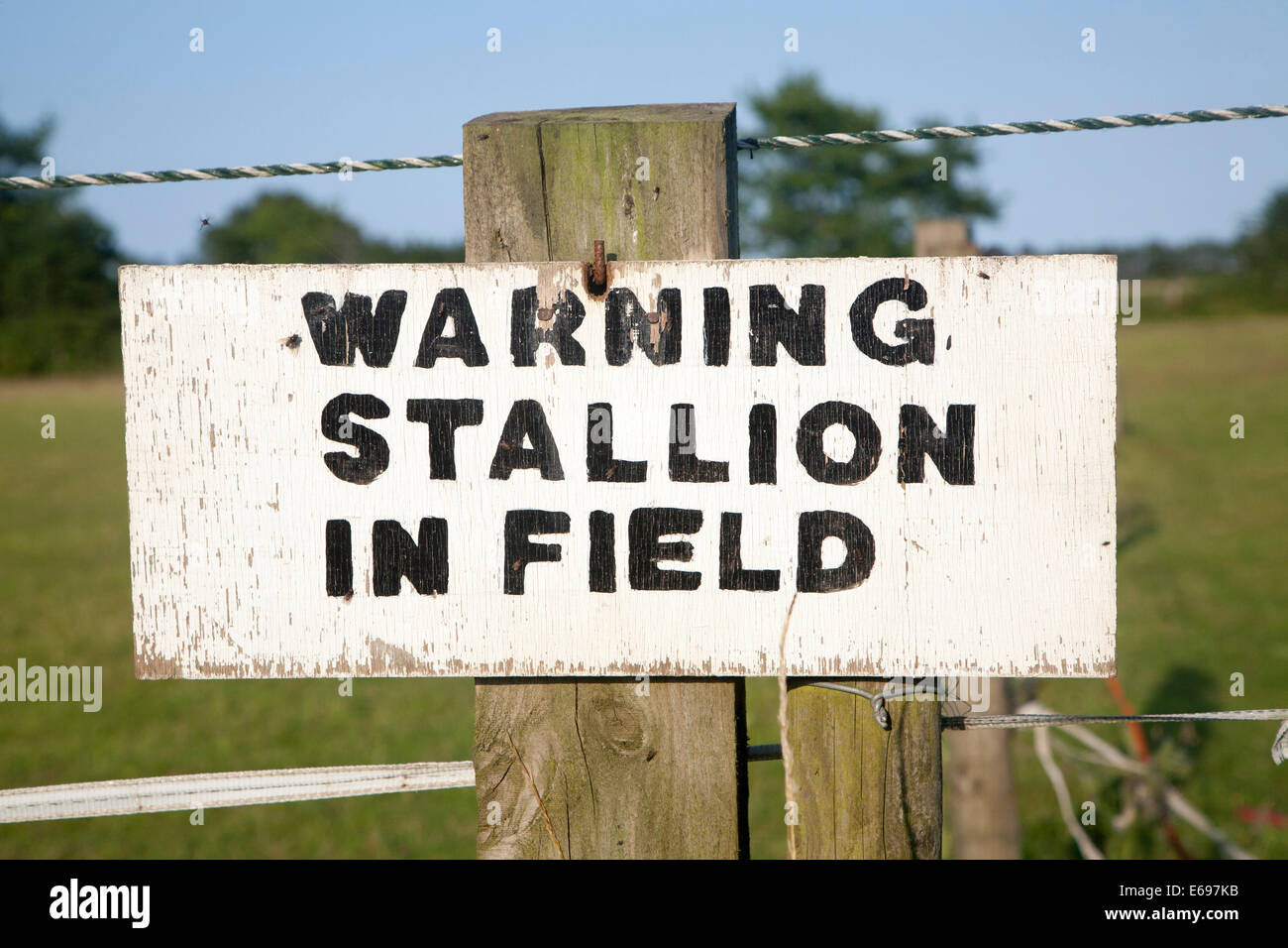 Sign Warning stallion in field close-up UK - Stock Image