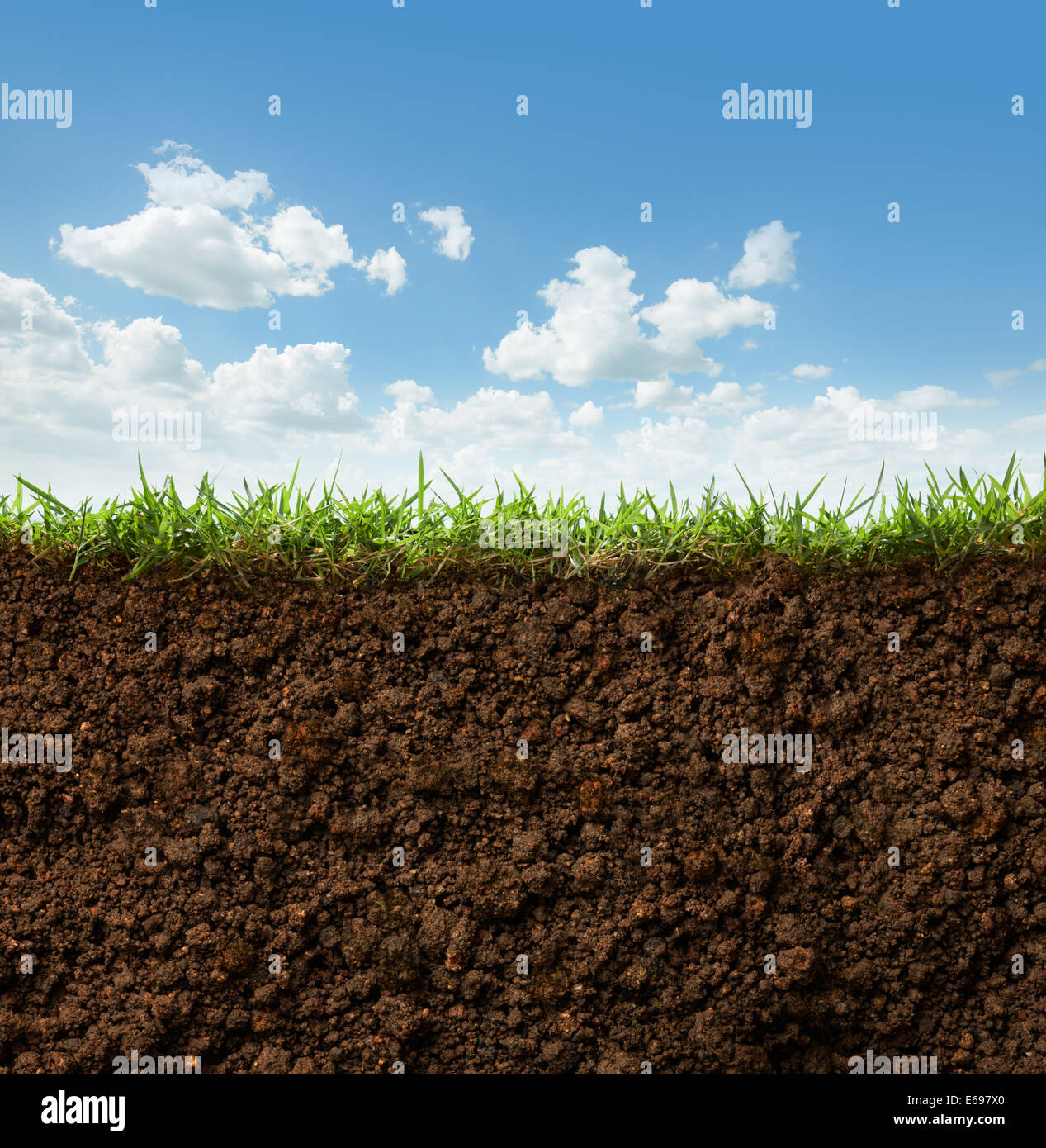 Cross Section Of Grass And Soil Against Blue Sky Stock