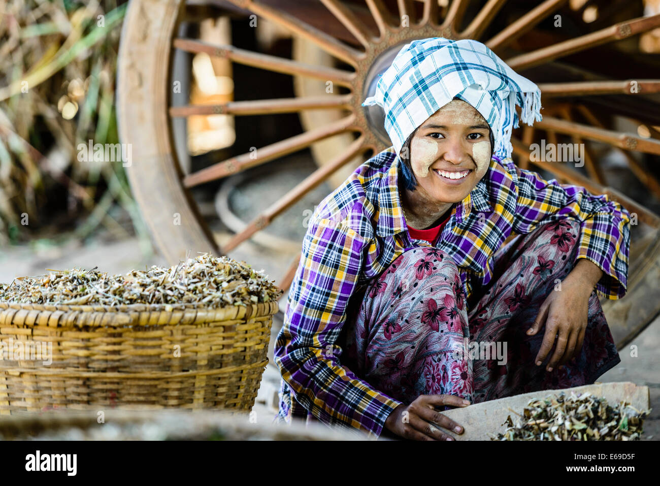 Asian girl selling herbs in market - Stock Image