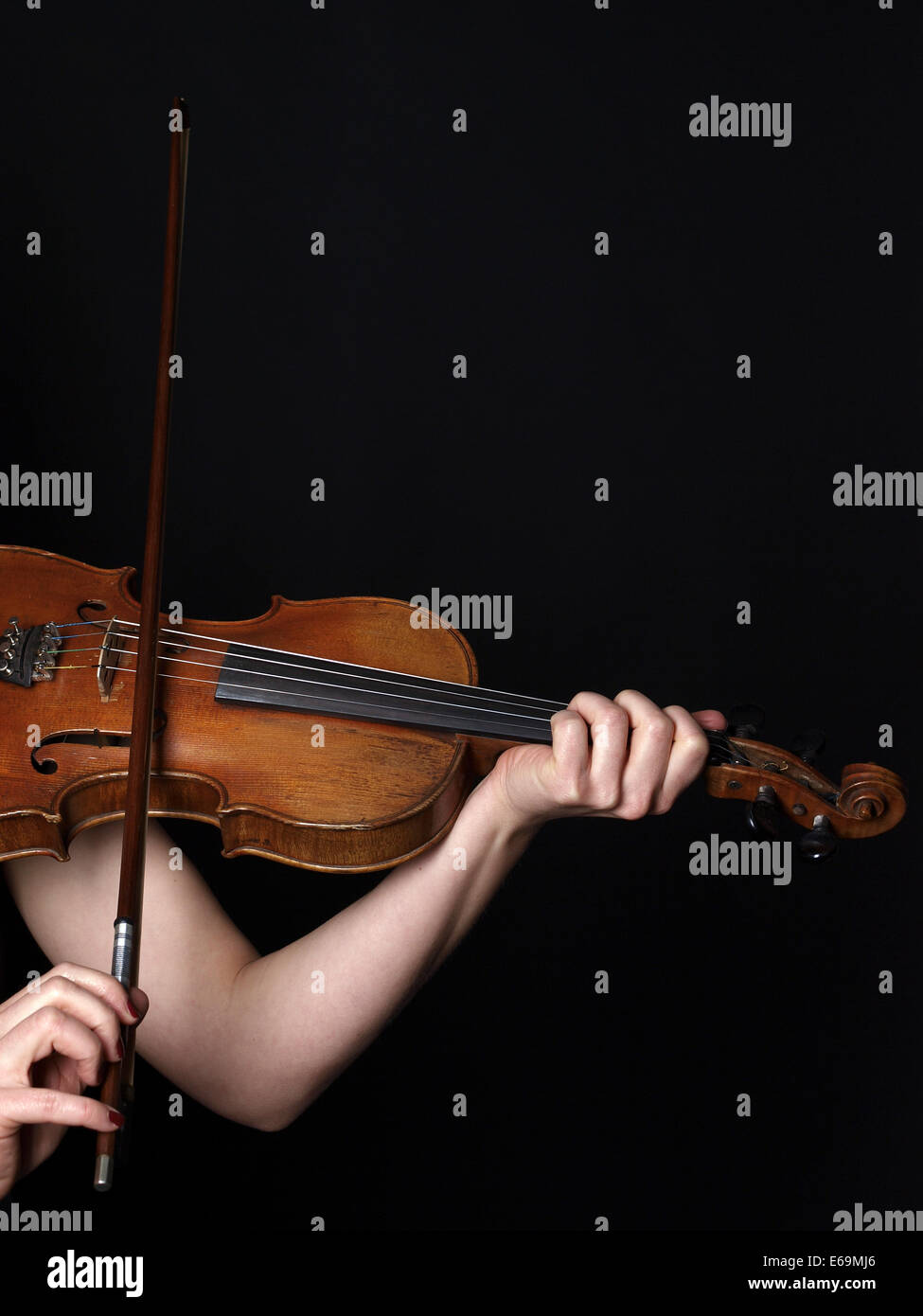 violin,playing music,violins - Stock Image