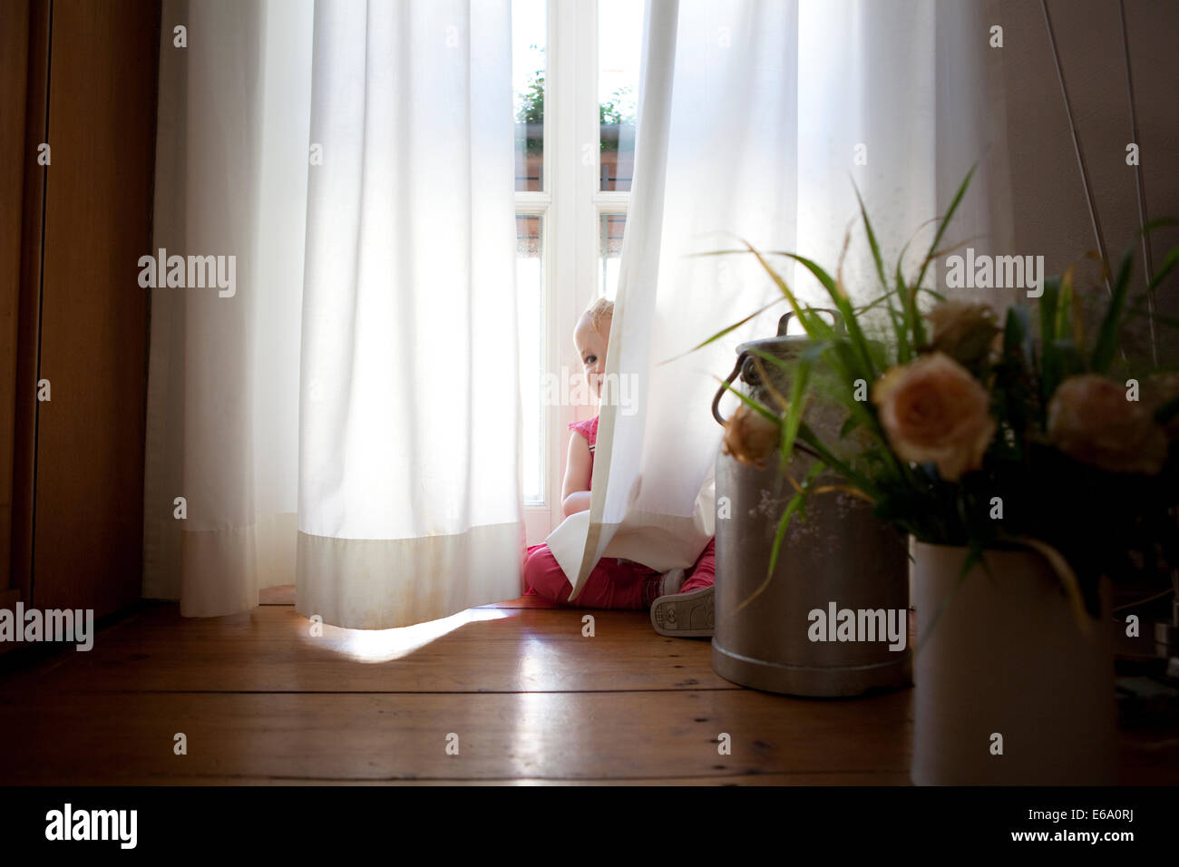 Young girl playing and peering out from behind opaque white curtains. - Stock Image