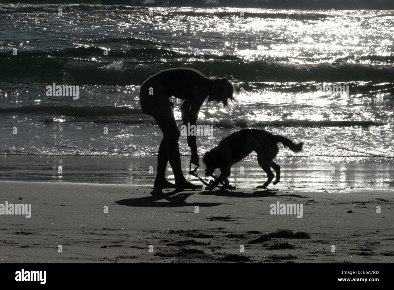 young woman,dog,beach walking - Stock Image