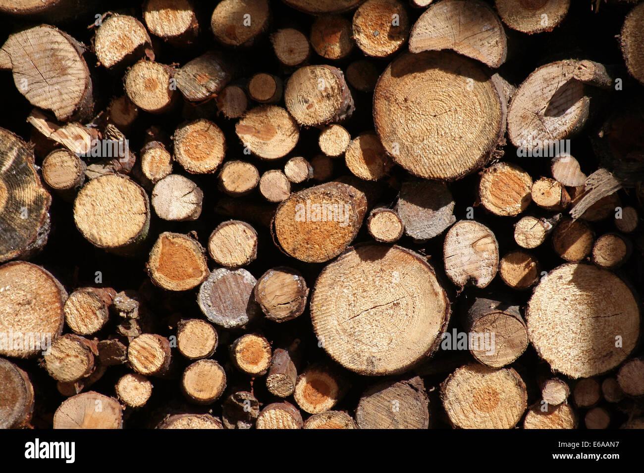 wood pile,firewood - Stock Image