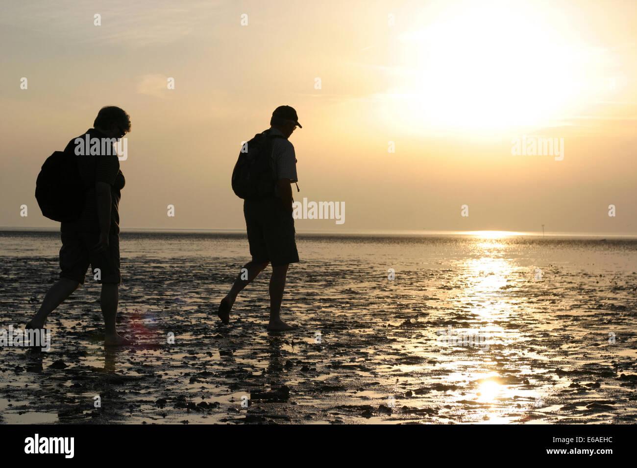 walk,wadden sea hiking - Stock Image