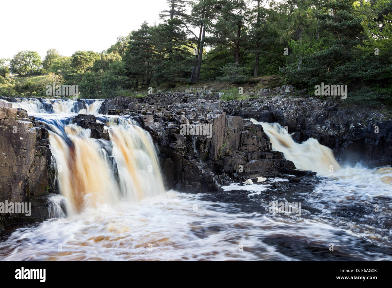 The River Tees at Low Force Bowlees, Upper Teesdale, County Durham, UK - Stock Image