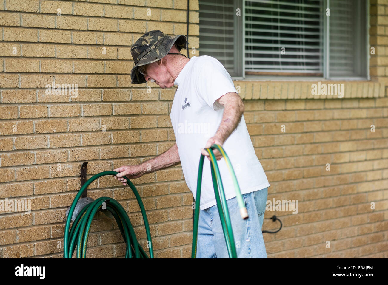 A 76 year old Caucasian man coils a water hose against the house outdoors. USA. - Stock Image