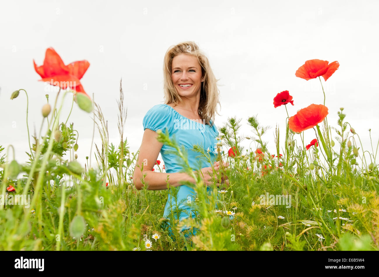 young woman,flower meadow ,summer - Stock Image