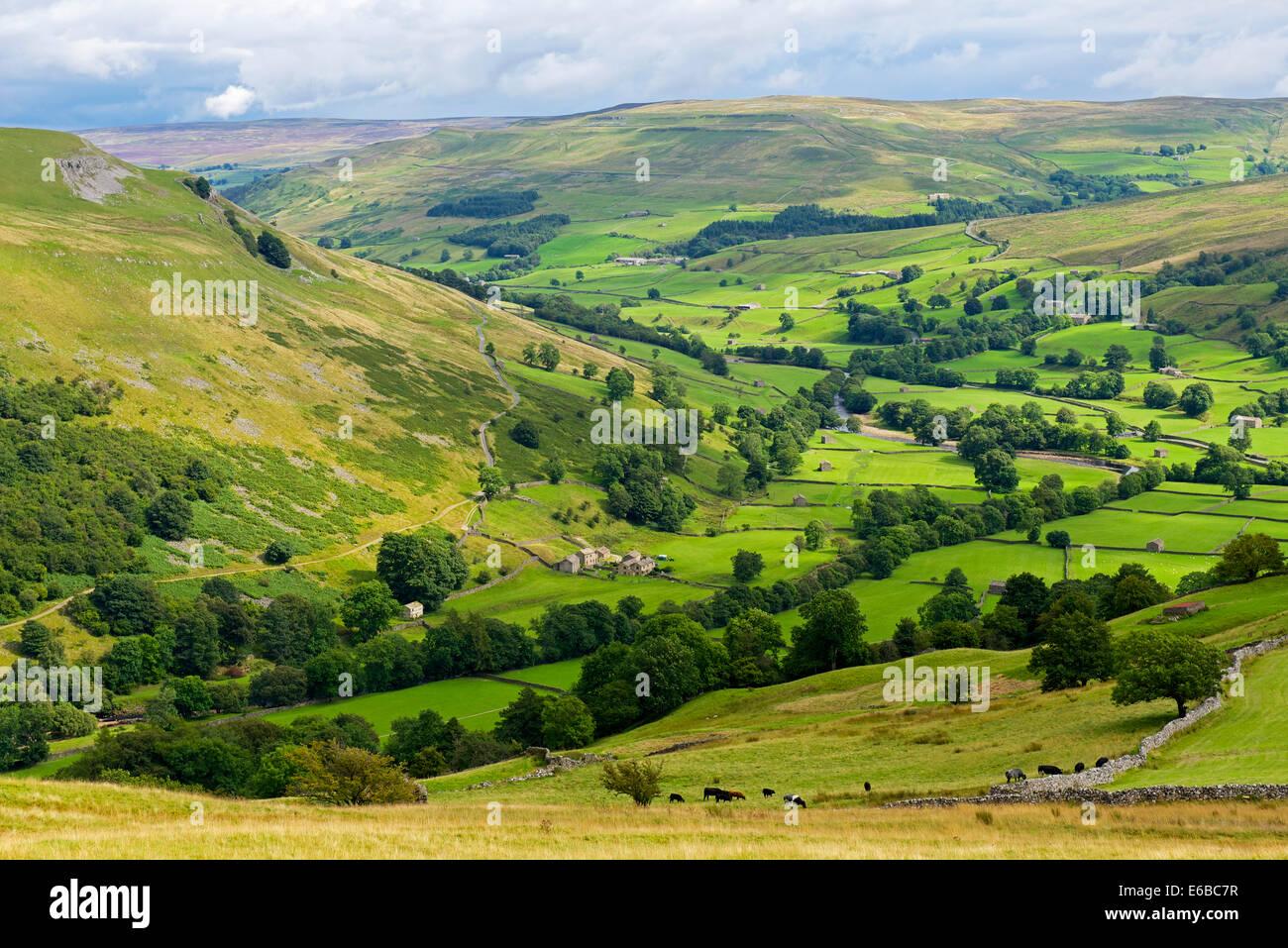 Upper Swaledale from Kisdon Hill, Yorkshire Dales National Park, North Yorkshire, England UK - Stock Image