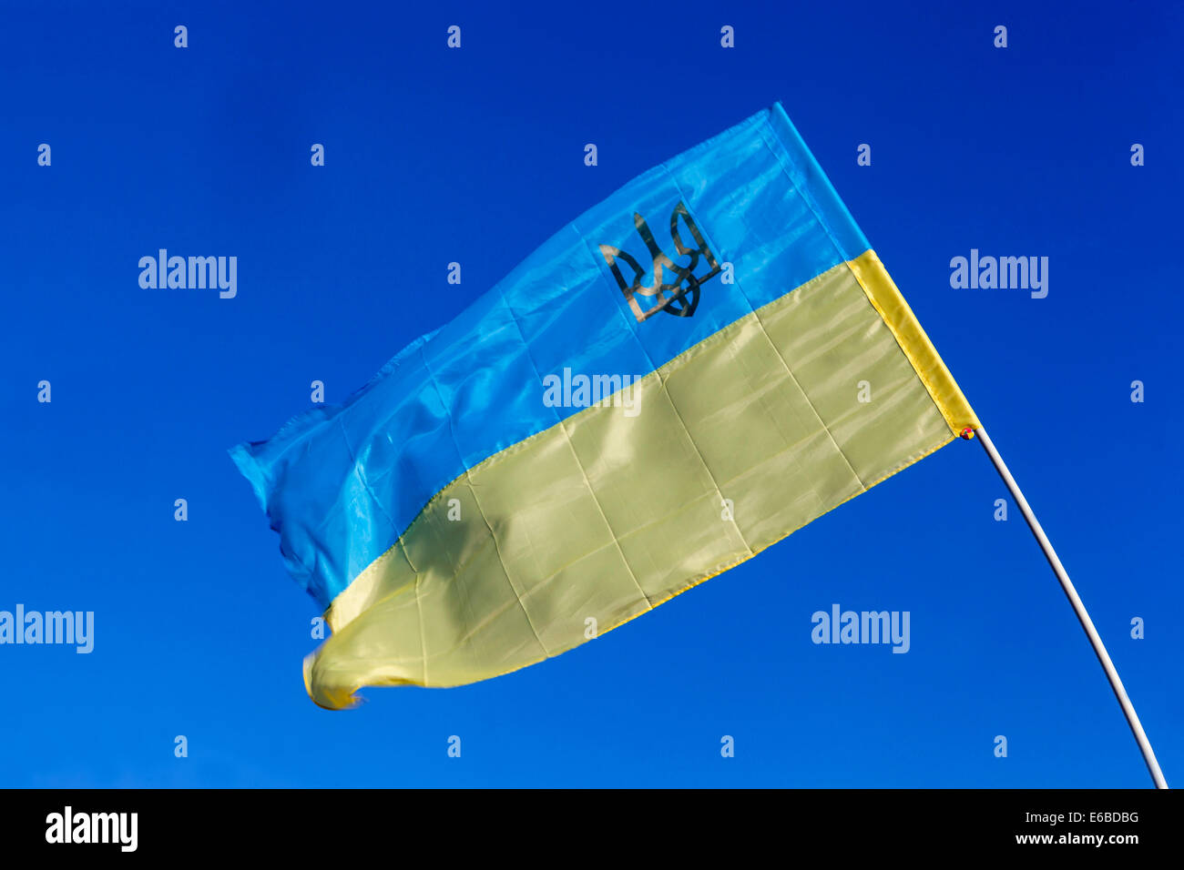 Ukrainian Flag Billowing In The Wind With A Trident A National