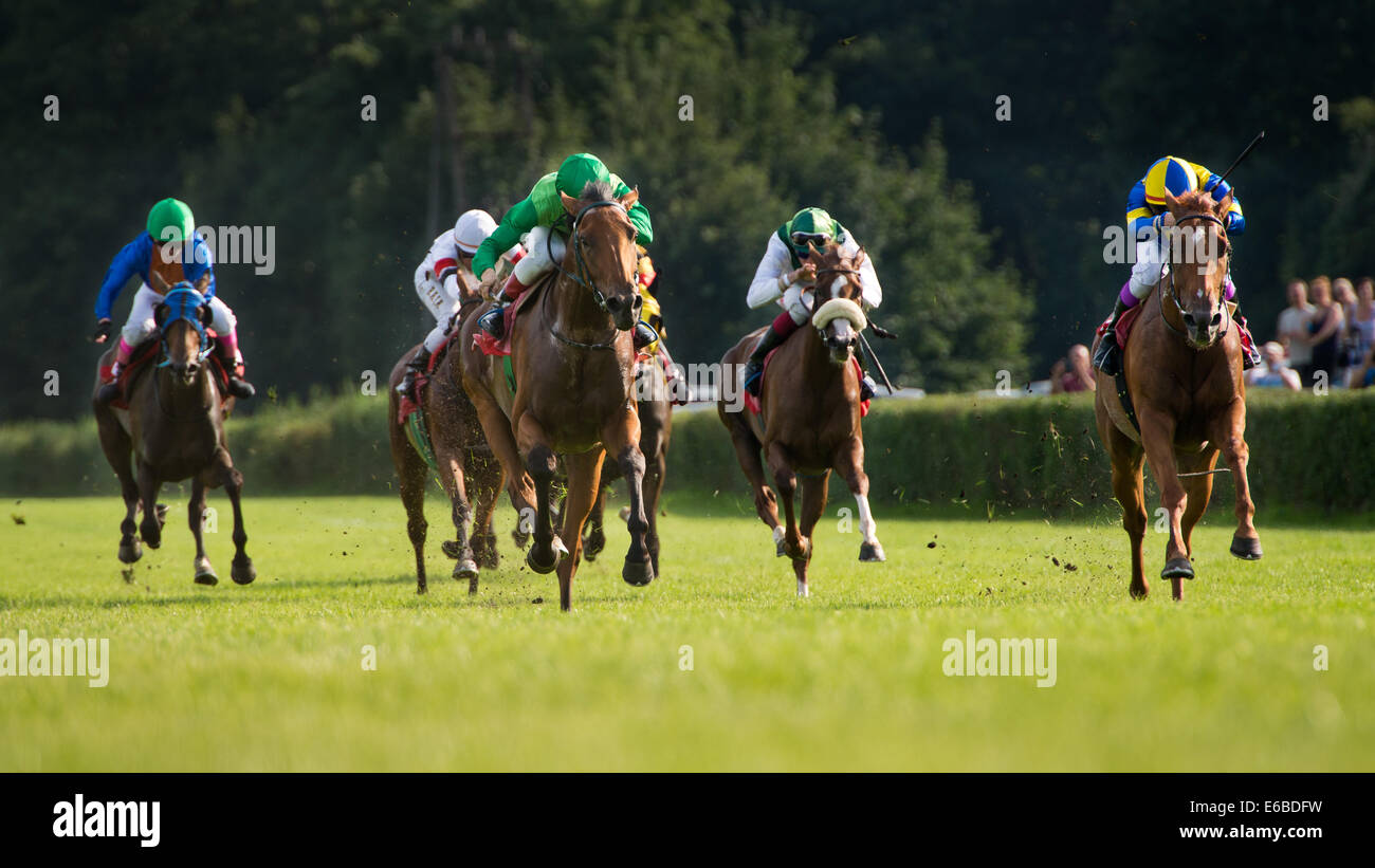 Finish the horse race for - three year old horse for the Prize Lira (Oaks) in Partynice, Wroclaw. - Stock Image