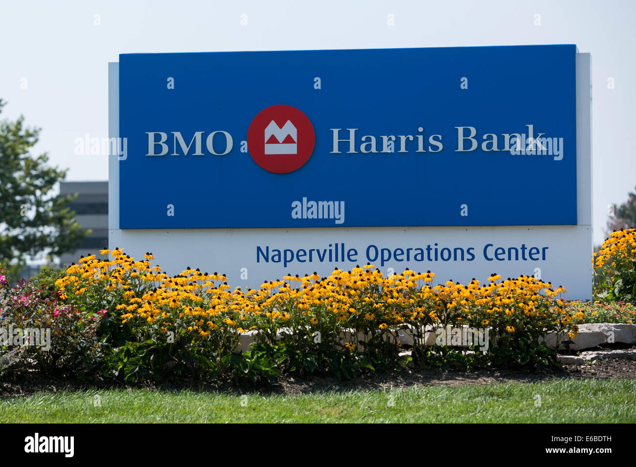 An office building occupied by BMO Harris Bank in Naperville, Illinois. Stock Photo