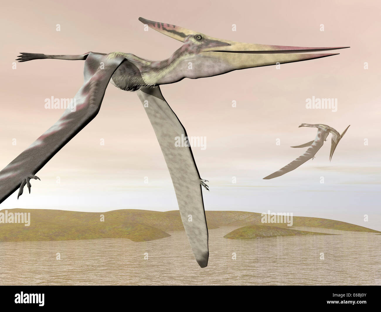 Two pteranodons flying over small islands. Stock Photo