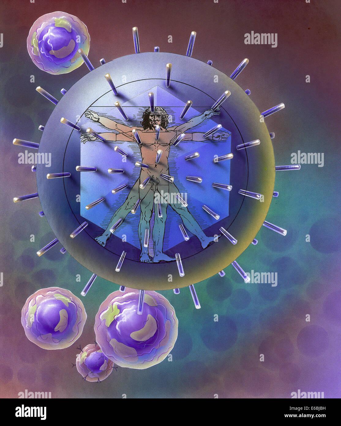 Vitruvian Man inside virus particle. - Stock Image
