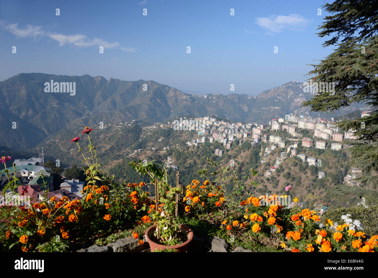 A morning view over part of Shimla suburbs on the Himalayan foothills in  Himachal Pradesh, India. - Stock Image