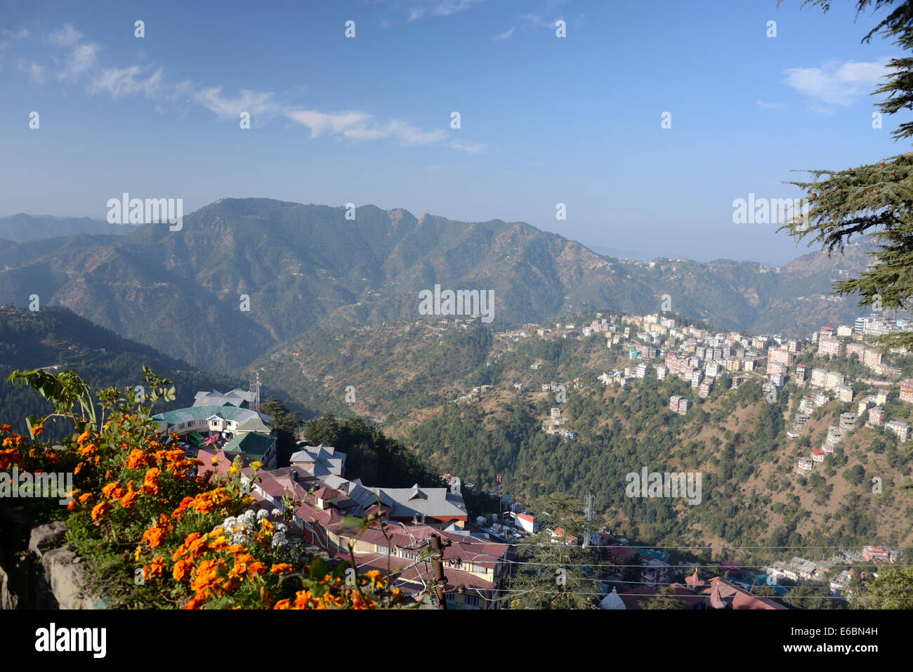 A morning view over part of Shimla suburbs on the Himalayan foothills in Himachal Pradesh, India - Stock Image