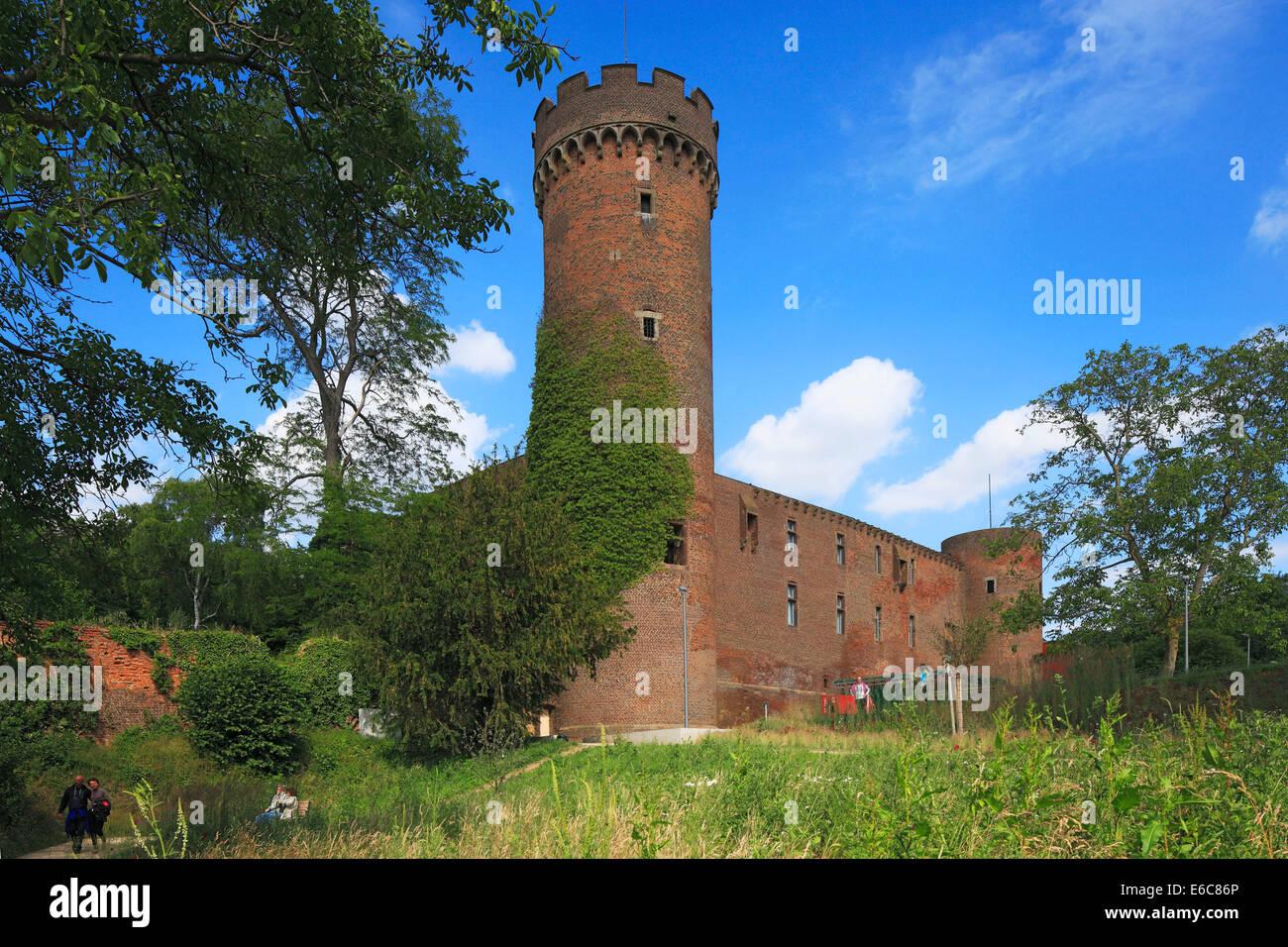 D-Zuelpich, Zuelpicher Boerde, Fore-Eifel, Eifel Foreland, Rhineland, North Rhine-Westphalia, NRW, horticultural - Stock Image