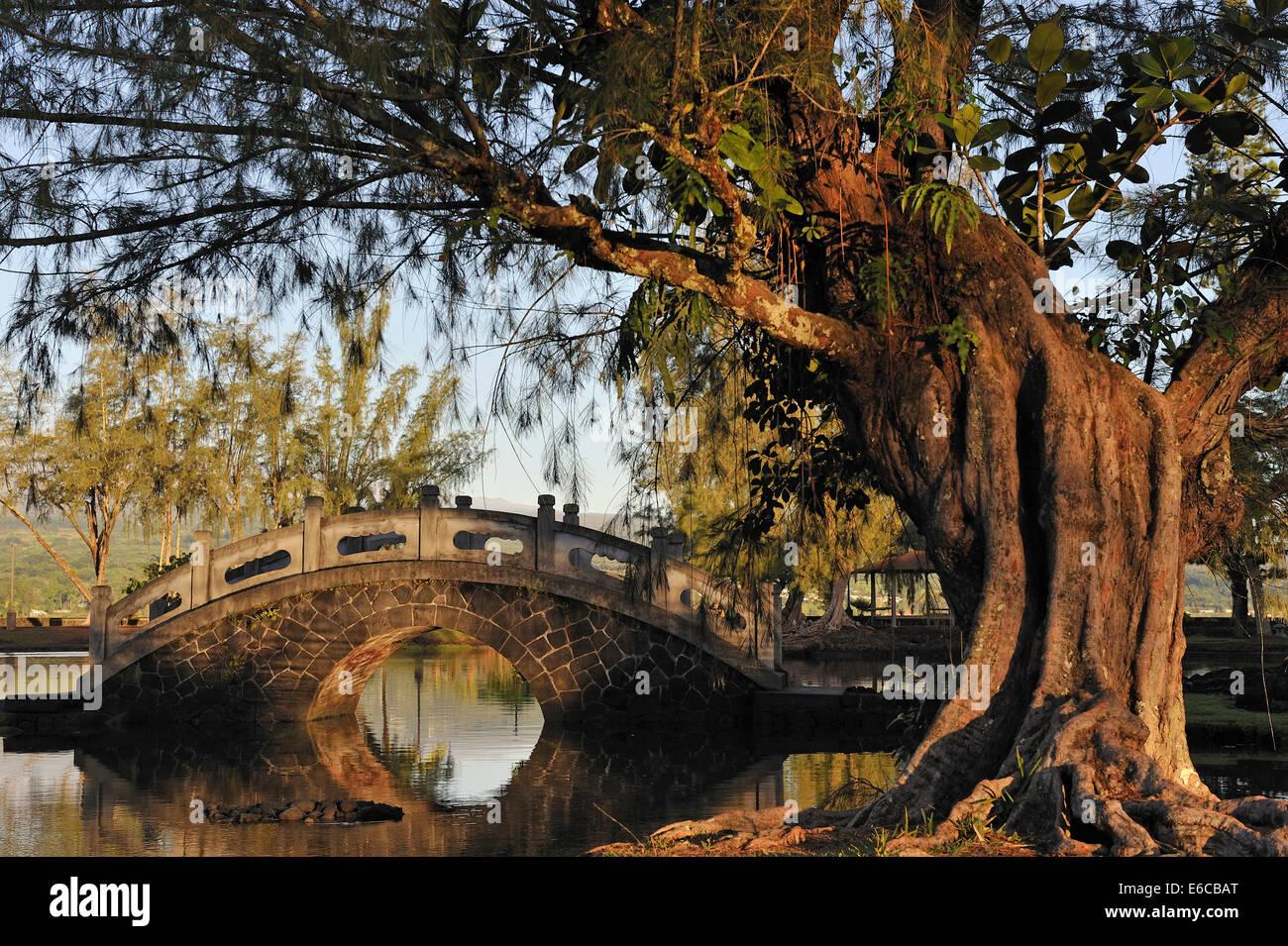 Japanese Garden, Hilo, Big Island, Hawaii Islands, USA - Stock Image