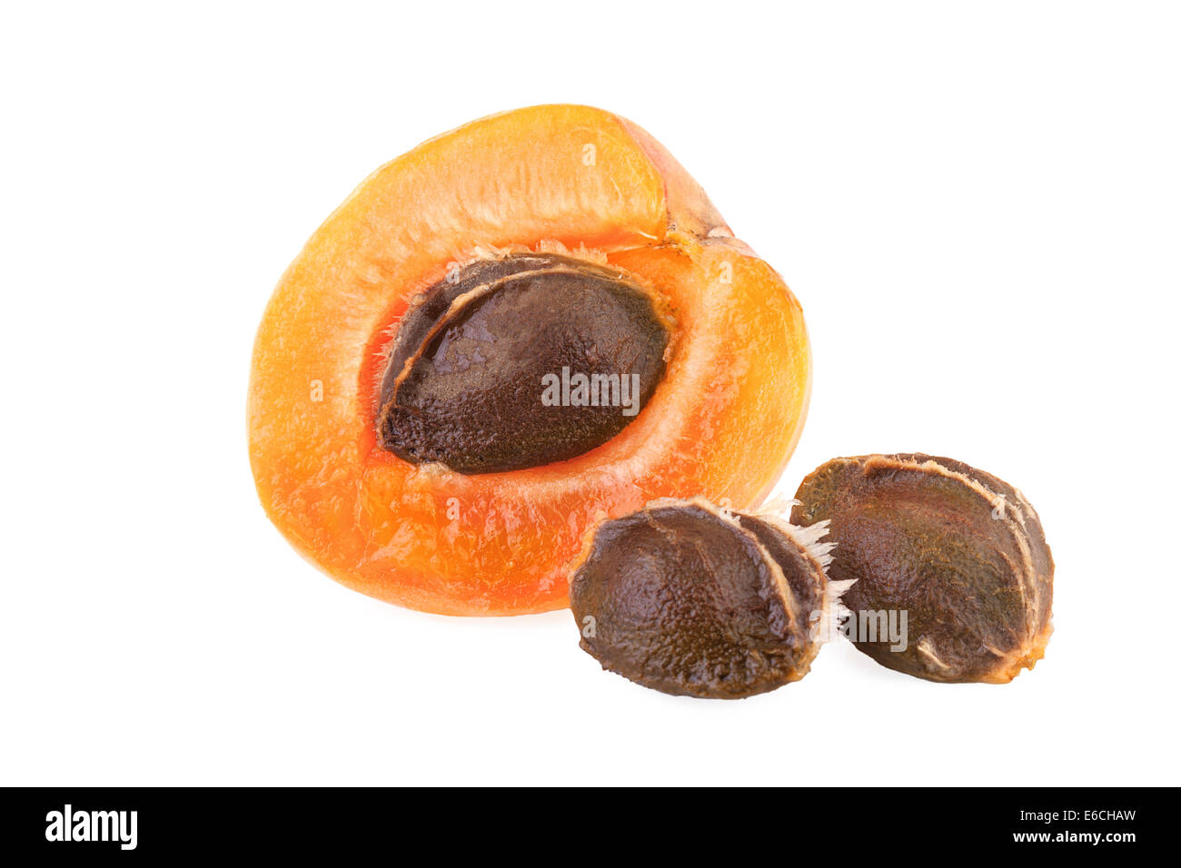 half of apricot with core - Stock Image