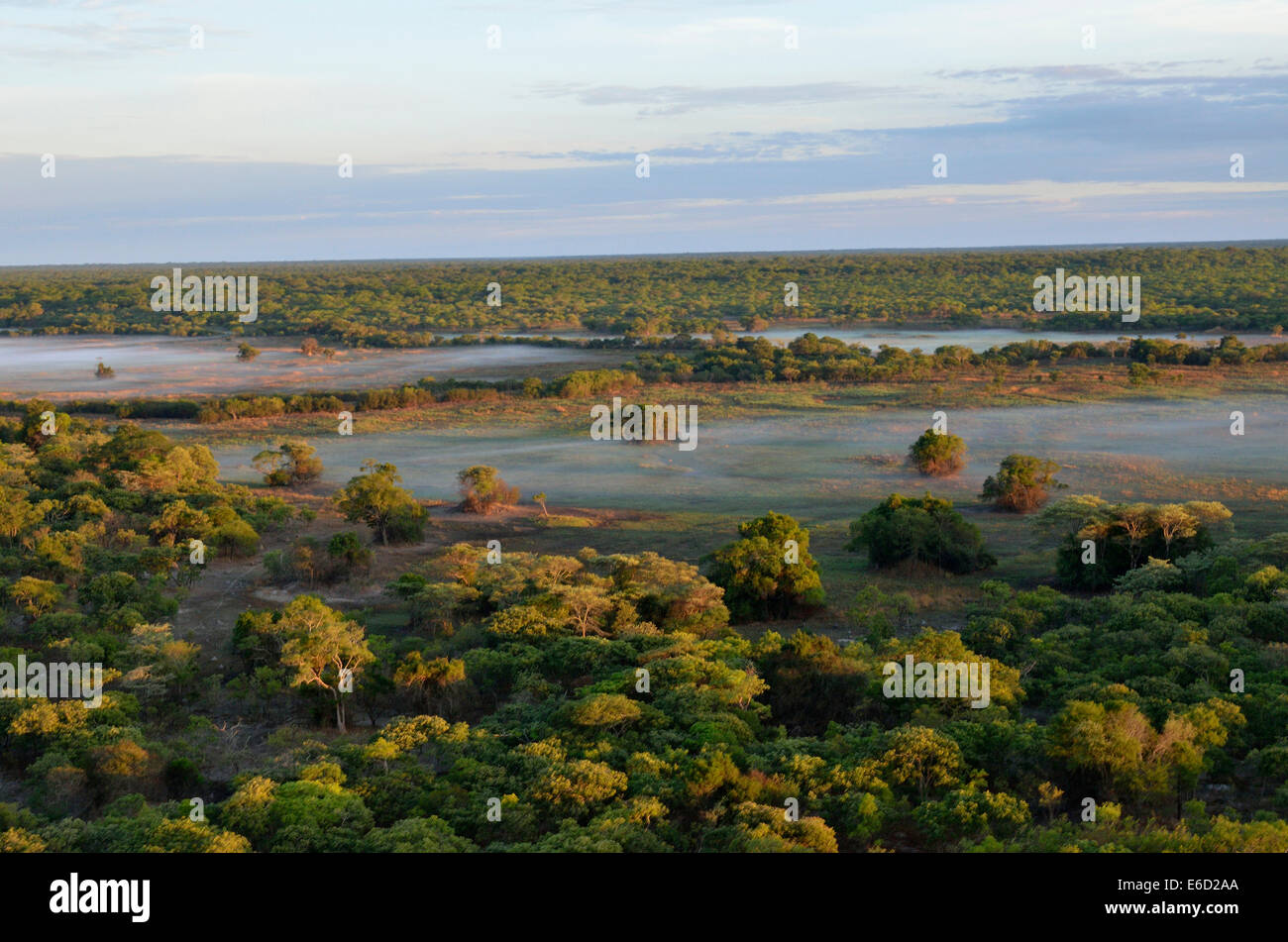 Aerial view, early morning in the Kasanka National Park, Zambia - Stock Image