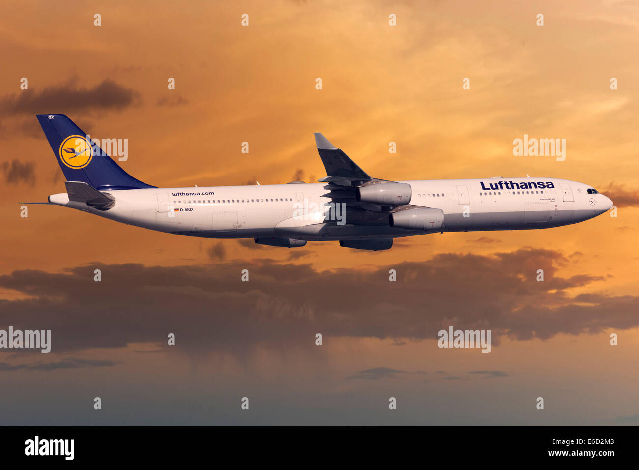 Lufthansa Airbus A330-343 in flight in the evening light - Stock Image