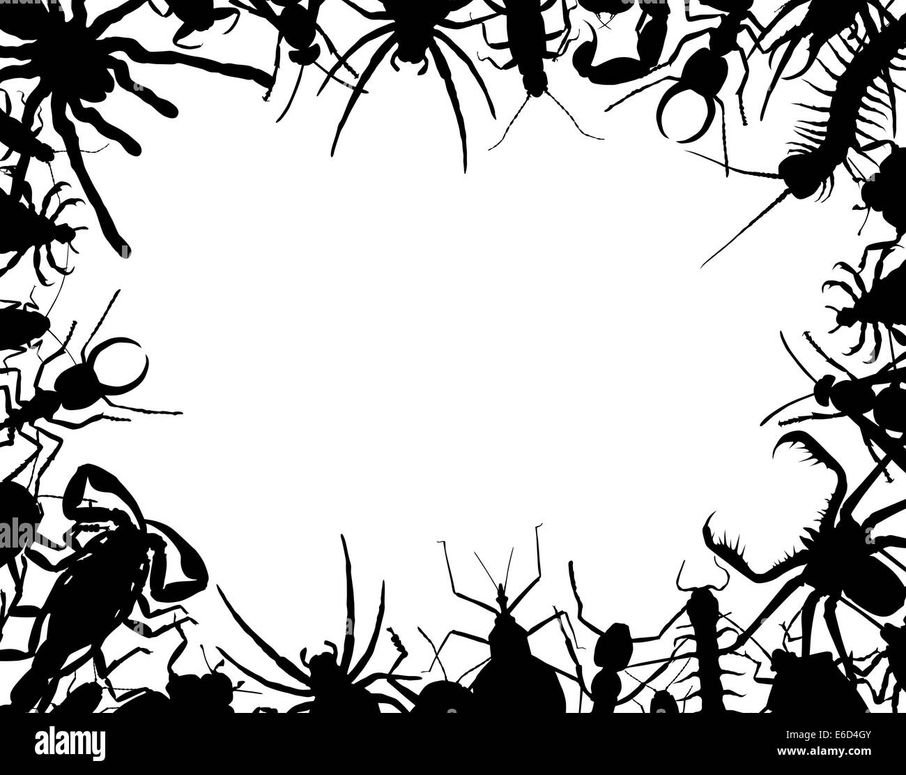 Border frame of editable vector outlines of insects and other invertebrates - Stock Vector