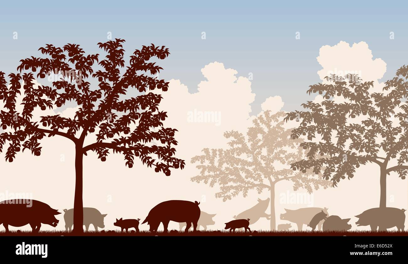 Editable vector illustration of free-range pigs feeding under fruit trees with all figures as separate objects - Stock Vector