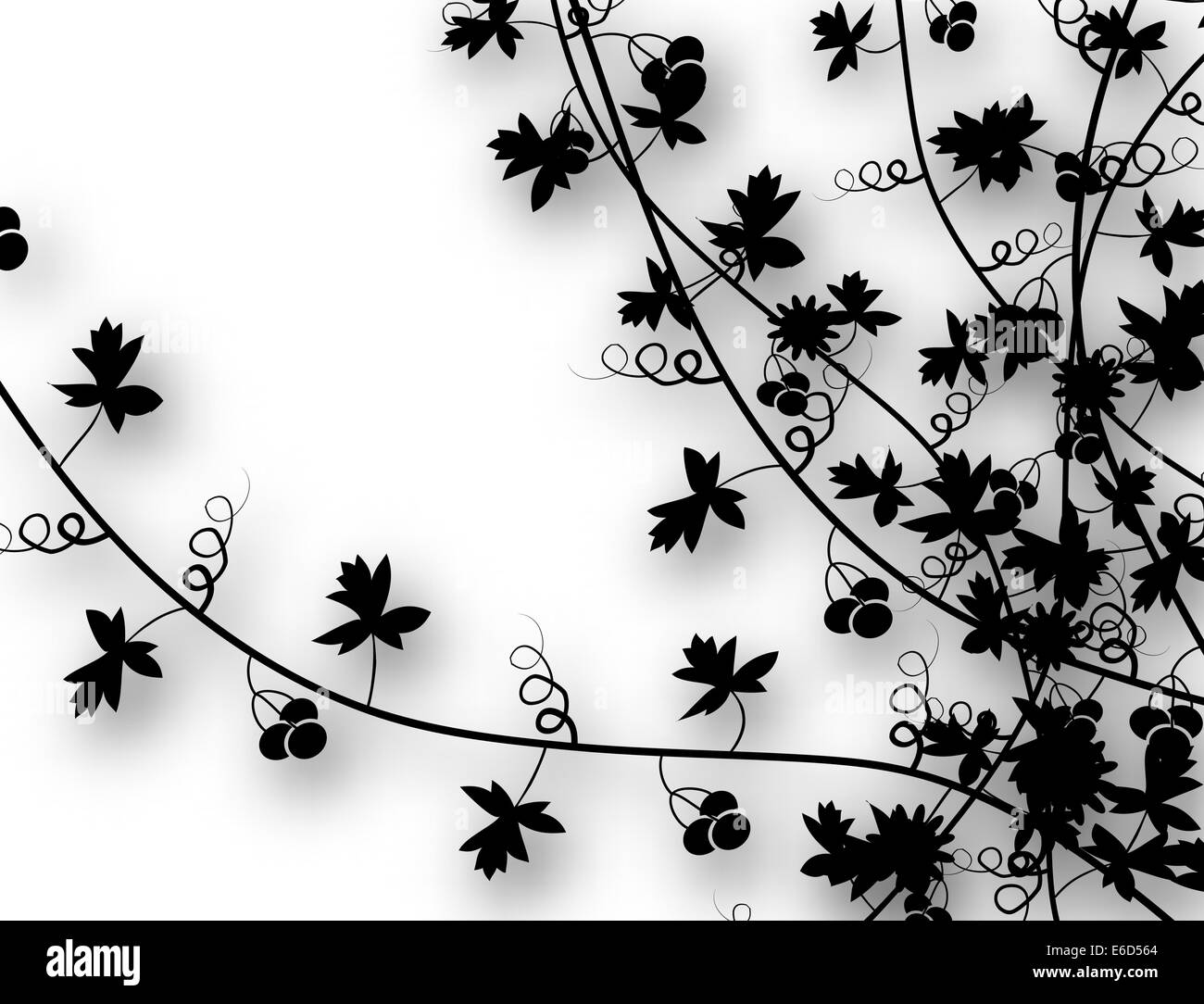 Editable vector illustration of vines with background shadow made using a gradient mesh - Stock Image