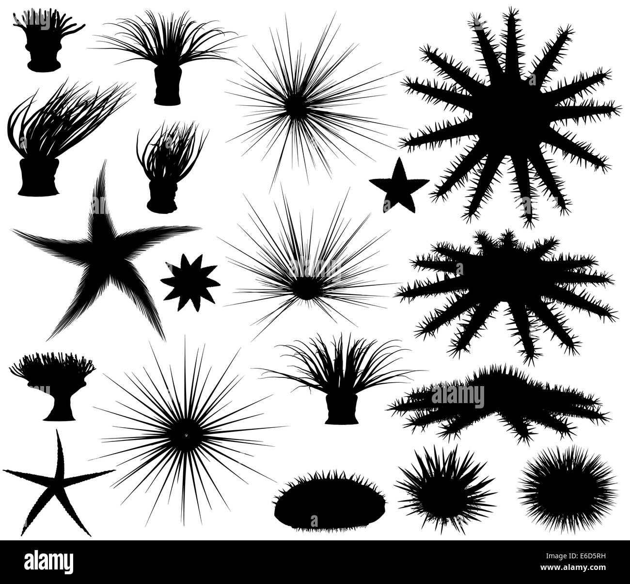 Set of editable vector silhouettes of sea lifeforms - Stock Image