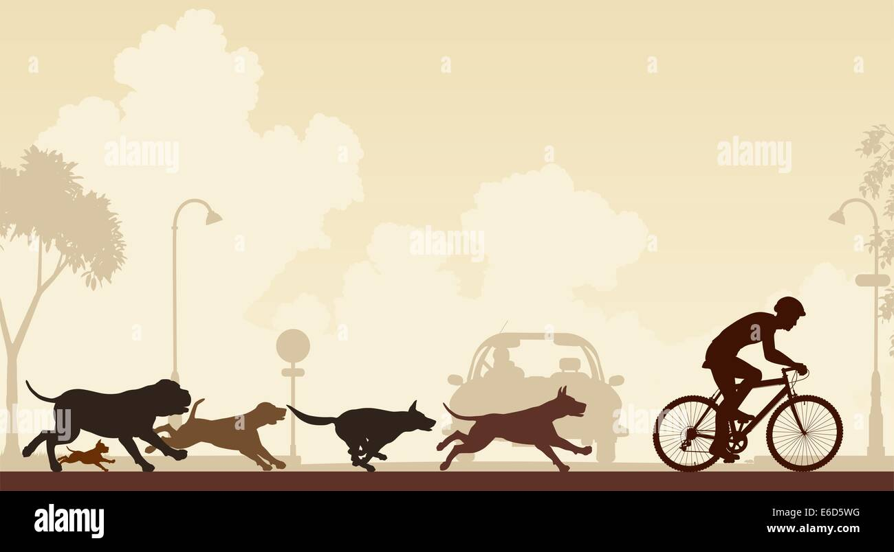 Editable vector illustration of dogs chasing a cyclist along a street - Stock Vector