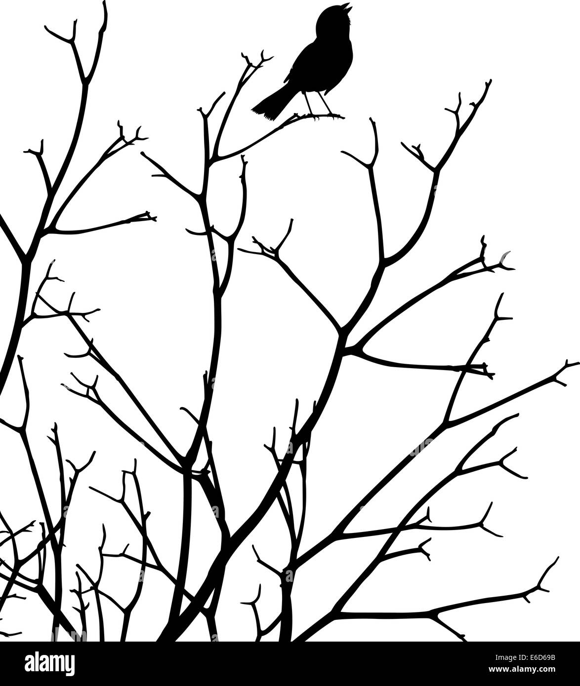 Editable vector silhouette of a bird singing at the top of a bare tree - Stock Image