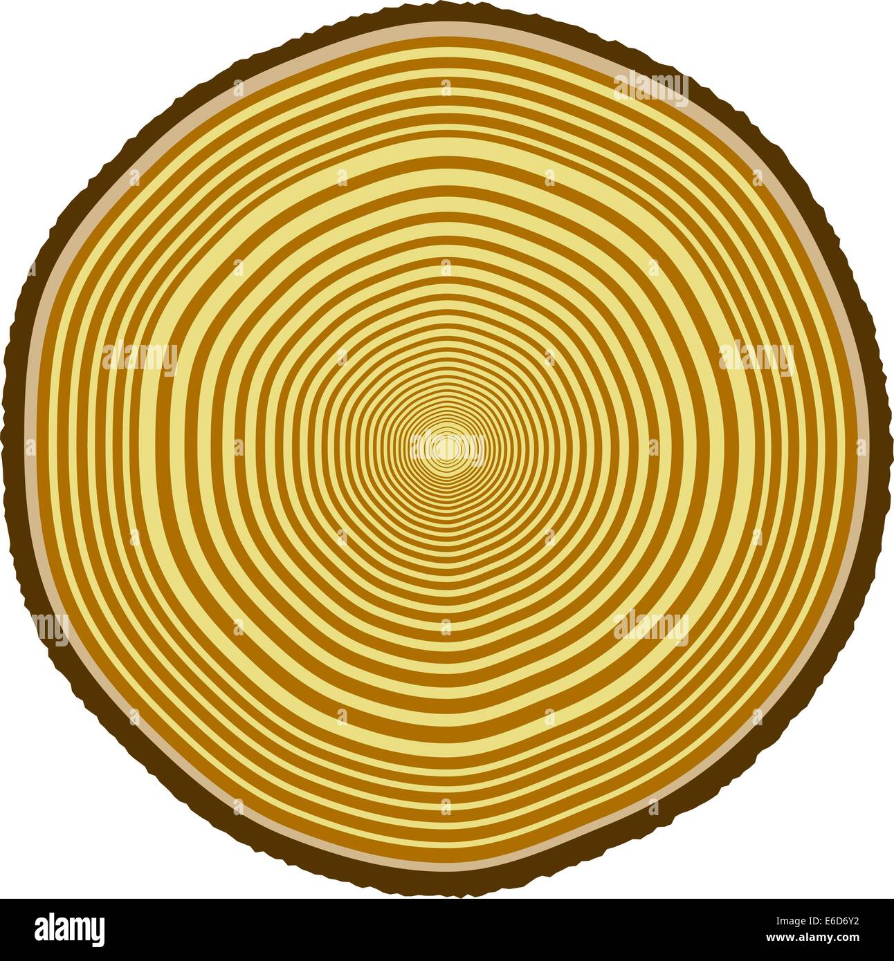 Vector illustration of tree rings from a 33-year-old tree - Stock Image
