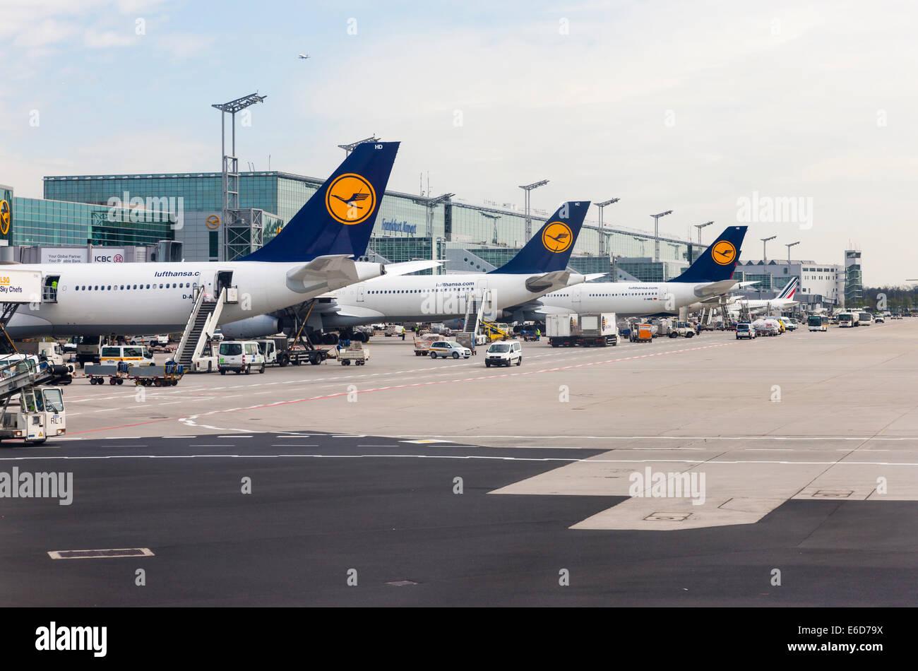 Germany, Hesse, Frankfurt am Main, Airplanes of Lufthansa at passenger terminal - Stock Image