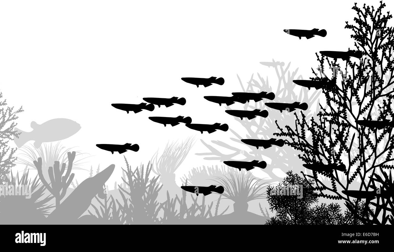 Vector illustration of coral and fish silhouettes - Stock Image