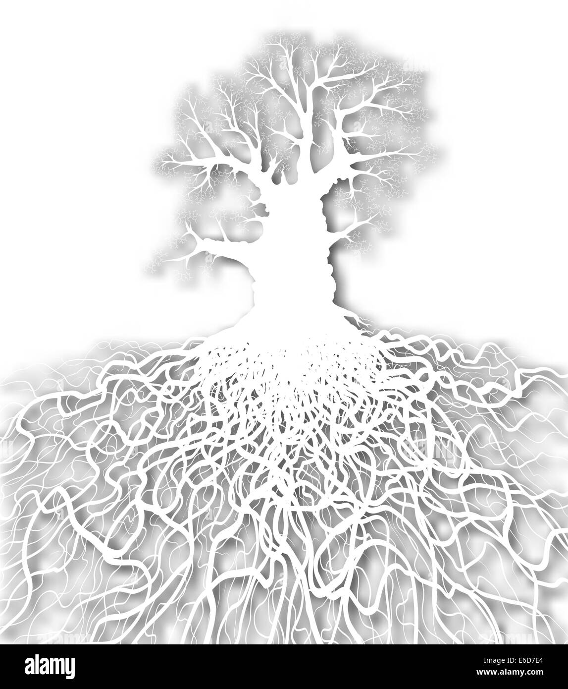 Editable vector cutout of a leafless oak tree plus root system with background made using a gradient mesh - Stock Image