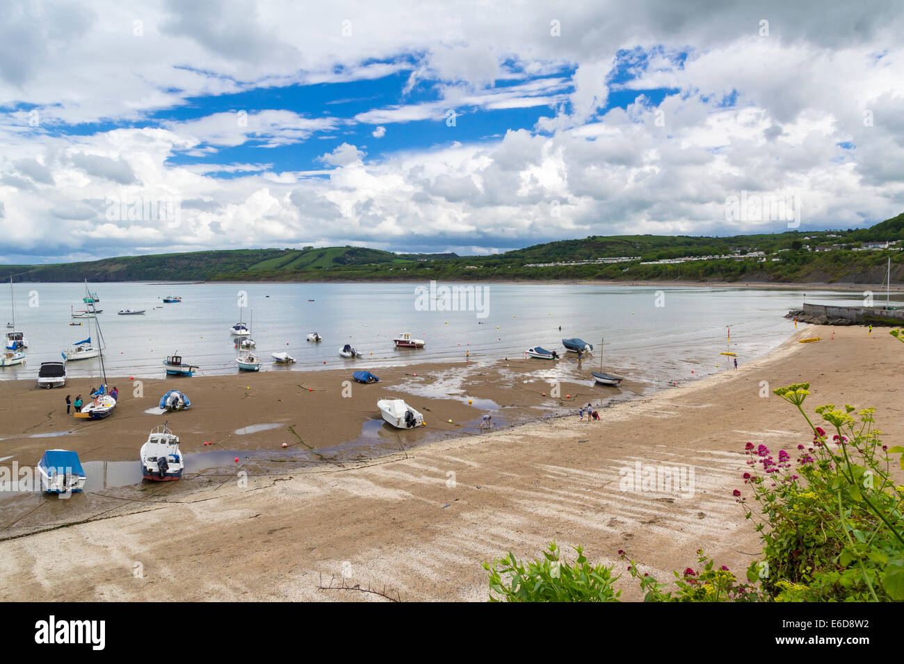 Boats in New Quay Harbour Wales UK Europe - Stock Image