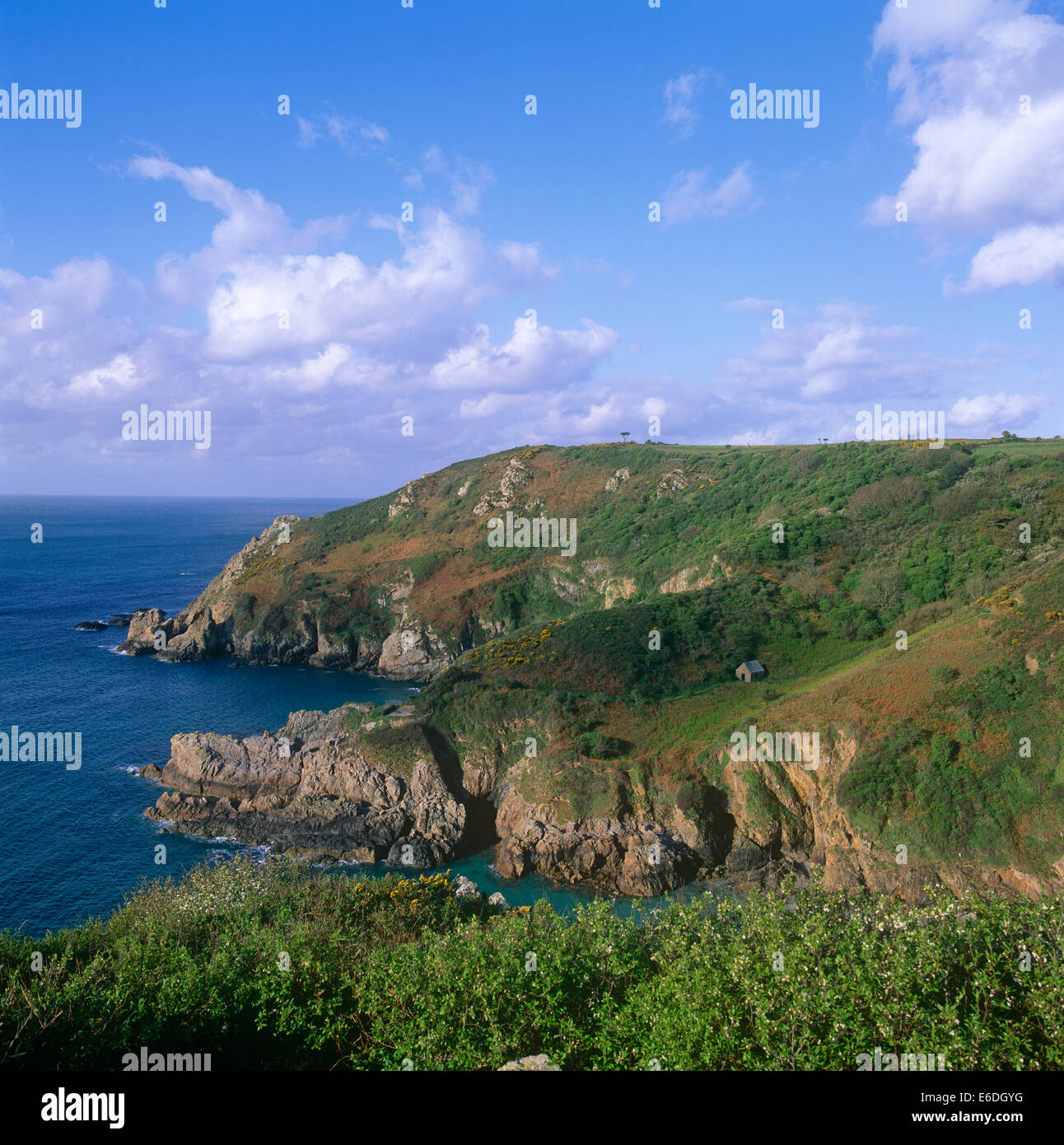 forest petit bot guernsey channel islands uk - Stock Image